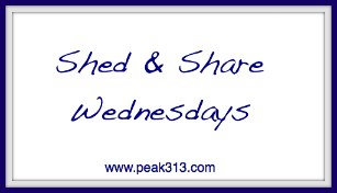 Shed & Share Wednesdays | peak313.com