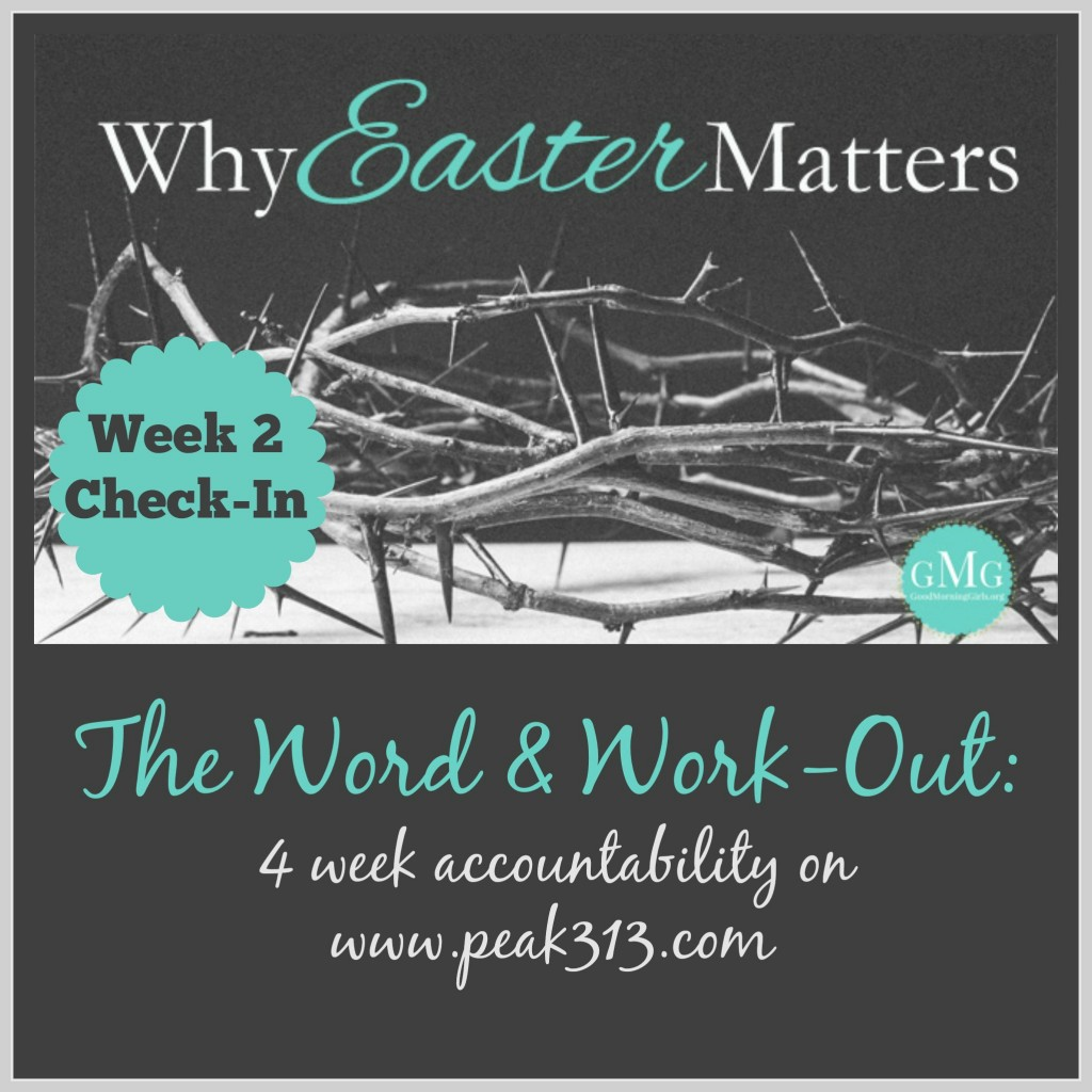 The Word and Work-Out: 4 week accountability (Week 2 Check-in) : peak313.com