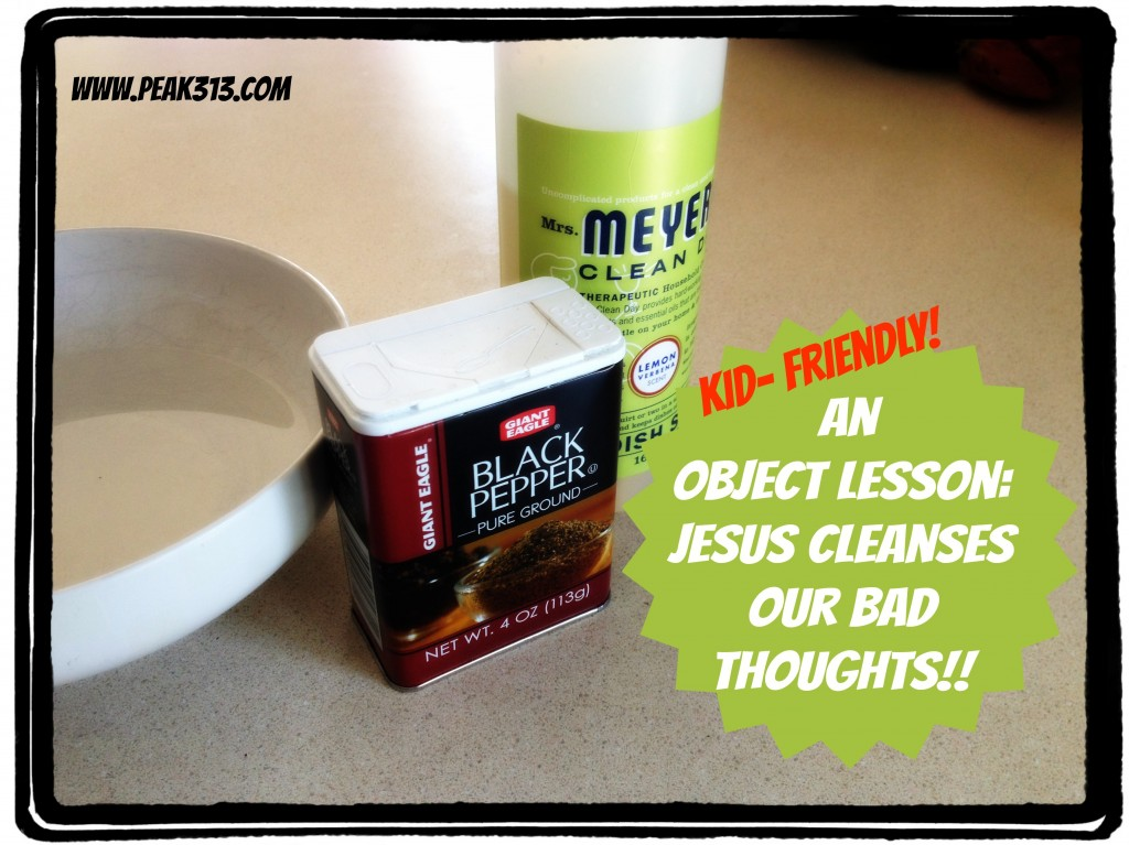 An Object Lesson in Jesus Cleansing our Bad Thoughts : peak313.com